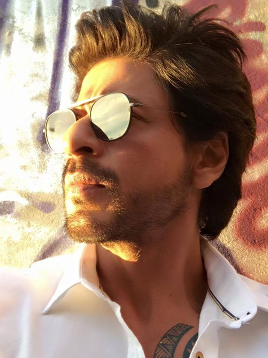 Sunlight is like painting…even the mundane becomes special. #srkgolddust